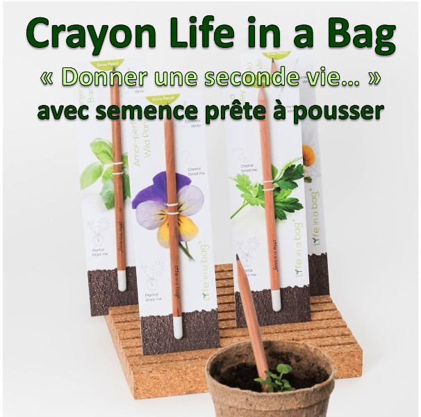 crayon-pencil-life-in-a-bag-semence-prete-a-pousser-aromate-plante-aromatique
