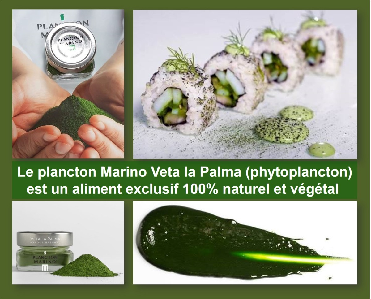 plancton-marino-veta-la-palma-phytoplancton-naturel-vegetal-sens-gourmet